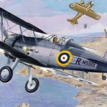 Roden 1/48 Gloster Sea Gladiator Royal Navy BiPlane Fighter